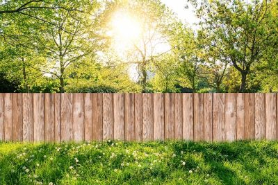 bigstock-Wooden-Garden-Fence-At-Backyar-291233341 (1)